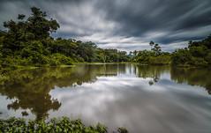 Selva Misionera (Javier Chiavone) Tags: argentina agua paisaje misiones andresito sansebastiandelaselva