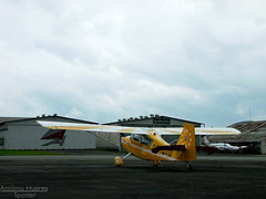 Looking to the sky to save me... (Antnio A. Huergo de Carvalho) Tags: sky white yellow branco aviation cu amarelo avio aviao bellanca citabria 7gcbc aviaogeral ptjtd