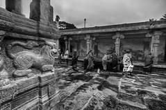 The Mythical Lion Ready To Pounce at Bhoga Nandeeshwara, Karnataka (Anoop Negi) Tags: india white black monochrome architecture outdoors temple courtyard hills nandi moment karnataka hindu anoop bnw negi bhoganandeeshwara ezee123 bhoga nandeeshwara nandishwara bhoginandishwara bhoganandiswhwara