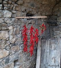 Gorga Cilento (gorga59) Tags: hot rock stone chili vegetable read peppers peperoncini novi peperoni cardile cilento magliano contry piccante velia ogliastro monteforte orria pellare