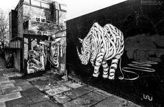 Camden - Londres (Chacha_Lala) Tags: londres london camdem tag graf graffiti streetart urbanart blackandwhite wall wallpainting argentique canon canonae1 film ilford ilfordpan400 filmisnotdead england art greatbritain
