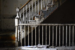 stare (bobsnikond200) Tags: indoor stair stairs staircase stairwell step steps rail railing banister balusters spindles paint flake peal pealing chip chipping texture baluster decay trash garbage