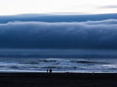 Ocean beach, late fall (g1rlwithacurl) Tags: nauticaltwilight dusk pacific pacificocean california silhouettes birds surf waves landscape beach sf obsf sanfrancisco oceanbeach