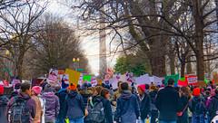 2017.01.29 No Muslim Ban Protest, Washington, DC USA 00287