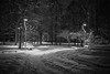 In the winter park (Unicorn.mod) Tags: 2017 bw blackwhite park cityscape urbanlandscape landscape manual manuallens winter snow light shadows canoneos6d samyang35mmf14asumc samyangmf35mmf14edasumcae