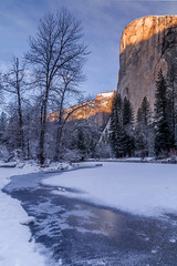 reflecting in frozen merced river (Sribha Jain) Tags: yosemite nationalpark elcapitan merced river mountain rock snow winter frozen reflection sunrise california yosemiteconservancy