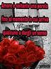 https://www.facebook.com/MossoTiziana/ #Tiziana #Mosso #Tizi #Twister #Titty #love #link #page #facebook #aforisma #citazione #frase #buongiornoatutti #buonpomeriggio #buonaserata #buonanotte #atutti #adomani #rose #red #Paulo #Coelho (tizianamosso) Tags: citazione adomani tiziana link coelho titty facebook twister tizi mosso red love buonpomeriggio buonanotte rose paulo buongiornoatutti frase atutti buonaserata page aforisma