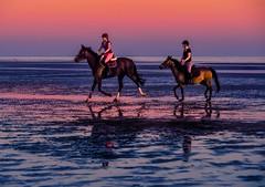 joy-ride (claudia.kiel) Tags: stpeterording spo nordsee northsea strand beach wasser water pferde horses reiter sonnenuntergang sunset sunsetmood dämmerung twilight seascape nature