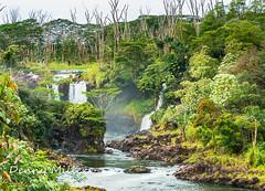 IMG_3526- For Facebook (Coolguy71457) Tags: hawaii monkseal rainbowfalls boilingpots solar windpower