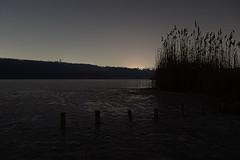 20170121_0008 (mystic_violet) Tags: wien vienna frozen lake cold kalt night nacht nikond3300 wienerberg