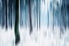 winter season (Gruenewiese86) Tags: harz winter forest wood woodland explore exploreharz nature naur wald wälder wandern waldlandschaft waldlandschaften waldboden froozen snow schnee canon 6d germany german deutschland 70200 landschaft landscape märchenhaft märchen traum heiter outdoor einfarbig