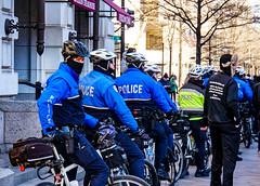 2017.02.04 No Muslim Ban 2, Washington, DC USA 00532