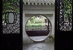 Moon window seen from Prunus Mume (flowering apricot) Pavilion