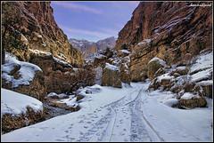 Walk to Solitude (hammadjaved) Tags: ba balochistan walitagi quetta snow walk solitude winters pakistan canon1100d maddy hammadjaved