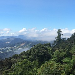 Day one, view from Gunung Brinchang