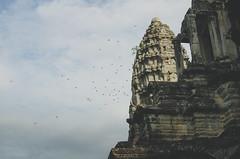 Angkor Vat (- m i l i e d e l -) Tags: voyage travel blue sky bird birds clouds landscape temple photography cambodge photographer escape ciel vol siemreap angkor oiseaux 2012 ruines photographe angkorvat neverstopexploring anotherescape angkortemple livefolk photographemontpellier emiliedelmond liveauthentic lovethewild