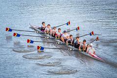 IMG_3001October 04, 2015 (Pittsford Crew) Tags: crew rowing regatta geneseeriver headofthegenesee pittsfordcrew