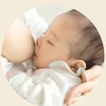 乳幼児の口腔発育研究団体の活動の写真