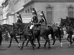 Garde rpublicaine (olivier.lours) Tags: horse paris noiretblanc cavalier chevaux garderpublicaine