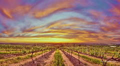 Shattered rock Sunset (Valley Imagery) Tags: sunset colour vines south australia valley barossa imagery lyndoch