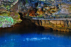 Exit The Abyss (Fly Sandman) Tags: blue cliff cold fern green water rock spring mo trout roaringriverstatepark cassville