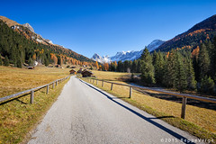 Ciampie Val di Fassa - Dolomiti (beppeverge) Tags: autumn mountain alps fall foliage autunno alpi montagna unescoworldheritage dolomites dolomiti altoadige dolomiten italianlandscape sudtirol ladino larici beppeverge