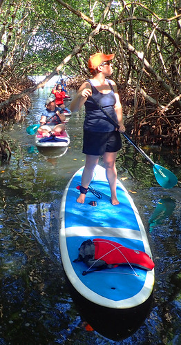 11_29_15 Private Paddle Tour Lido Key FL 06