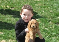 sam-and-chester--chester-is-one-of-molly-and-chewys-puppies-_4470848669_o