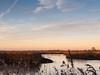 oxford-2-051216 (Snowpetrel Photography) Tags: olympusem5markii olympusm1240mmf28 otmoor oxfordshire afternoonlight naturereserves reeds reserves sky starlings sunset winter oddington england unitedkingdom
