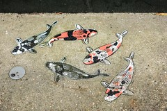 "one of these is not like the others (listening to ""clair de lune"", martin jones) (jeneksmith) Tags: jeremynovy art urban city fish koi graffiti stencil sidewalk bywater bigeasy crescentcity nola neworleans louisiana canon hearts"