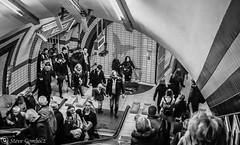 Entertaining commuters in the London Underground. (steve.gombocz) Tags: underground london urbanstreet blacknwhite greyscale streetscene blackwhite bwphotos bwstreetscenes bw bwstreet flickrbw bwflickr blackwhitephotos blackwhitephotography flickrstreet blackwhitestreet bwstreetphotography streetlife street blackandwhite streetscenes streetphotographs bwphotographs streetphotography bwphotography streetbw noiretblanc schwarzundweiss negroyblanco zwartwit neroebianco sortoghvid mustavalkoinen svarthvitt svartoghvitt svatochvitt czarnyibiaty pretoebranco noirblanc negroblanco schwarzweiss pretobranco nerobianco olympus olympususers olympuscamerausers olympusbw olympusmzuiko25mmf18lens photosinblackandwhite olympuseurope flickrblackandwhitephotos micro43rdsuk olympusdigitalcamerausers olympuszuikodigitalclub bwpictures olympusstreet londonunderground londonbw londonmonochrome londonscenes londonphotographs olympusem5mark2 olympusm25mmf18 explorestreet flickraddicts commuters streetpictures londoncommuters explorebw out outandabout streetphotos tuttiicoloridelnero