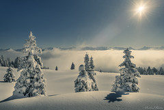 Winter (vlastimil_skadra) Tags: switzerland scenery swissalps sky snow sun alpen alps atmosphere awesome winter beautiful beauty wow discovery europe earth relax ngc nikon nature landscape landscapes light hill hiking rocks mountains mountainside mountain magic travel traveling tree outdoor outdoorlife hobby