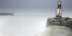 Ibaiak Itsaso izena hartzen duenekoa. (Karhobi Photo) Tags: asturias bufaderos caballo cantabria cantabrico costa cuevasdelmar gaviota karobi liencres llanes mar marinas oriental prías urros