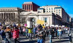 2017.02.04 No Muslim Ban 2, Washington, DC USA 00490