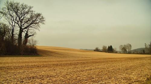 Moated Castle Menzingen - The Hills behind / Wasserschloss Menzingen - die Hügel dahinter