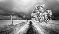 Winter is coming (Perez Alonso Photography) Tags: winter feldberg freiburg snow baden wurtemberg germany path landscapes blackandwhite blackwhite