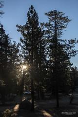 Primeros Rayos (berth_canizales) Tags: sol sunrise san dia pedro amanecer ensenada nuevo rayos martir