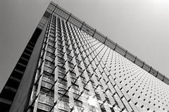 federal funding (Super G) Tags: sanfrancisco blackandwhite bw building film federalbuilding selfdeveloped kodaktmax100 olympusom4 zuiko28mmf28 d7695mins68d11 20150619om4tmax100