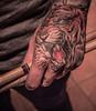 ROAR!!!!!!! (jimbob195) Tags: man black color colour tongue tattoo canon grey hand drum teeth tiger band sharp drummer roar drumsticks 600d lr4