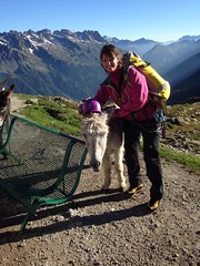 Grand_Parcours_alpinisme_Chamonix-Concours_2014_ (2)