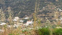 a valley village near Korthi IMG_8075 (mygreecetravelblog) Tags: village greece valley greekislands andros cyclades cycladesislands androsgreece androsisland korthi korthiou ormoskorthiou ormoskorthiouandros korthivillageandros korthiouandros