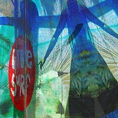 The Laughing Gull's Escape (Karen Kleis (Back Sunday!)) Tags: texture photomanipulation gull digitalart surreal hypothetical laughinggull artdigital arteffects trolled sharingart netartii givesurf