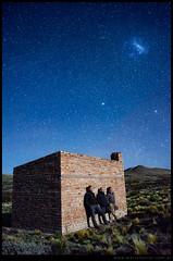Observadores de la estepa nocturna