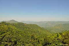 Phagu Valley (bNomadic) Tags: road trip travel green forest trek shimla weekend cottage peach peak bowl orchard trekkers adventure monastery journey valley apricot destination chur serene himachal himalayas jams chandigarh pradesh khash giri rajput chail rajgarh chandani shivalik solan devta dolanji menri churdhar habban giripul sirmour sirmaur choordhar shirgul bnomadic ochhghat bhuira pachhota noradhar