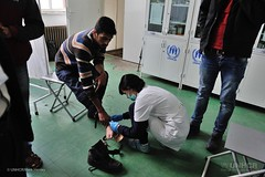 VULNERABLE AND LOOKING FOR A HOME (UNHCR) Tags: news europe refugee refugees serbia help aid syria balkans protection assistance unhcr preshevo unrefugeeagency unitednationshighcommissionerforrefugees unhighcommissionerforrefugees ©unhcrmarkhenley