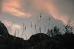 Imprinted (J.J.Evan) Tags: sunset sky grass clouds atardecer focus rocks soft cielo nubes bariloche