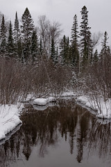 Mirror Mirror - Explored 01-09-2017 (jwfearn2016) Tags: michigan whitefishbay upperpenninsula winter reflections water cold pinetrees snow ice