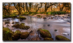 River Plym (jeremy willcocks) Tags: riverplym colour landscape river rocks trees sunlight sun pebbles jeremywillcocks wwwsouthwestscenesmeuk fujixt10 xf1024mm dartmoor devon uk england