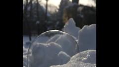Ice Bubble Magic (Rosemary Danielis) Tags: bubbles icebubble frozenbubble winter snow outdoor nature video