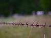 2016-09-26_18-12-22 (torstenbehrens) Tags: bokeh tarbek schleswigholstein deutschland panasonic dmcg1 on1 on1pic